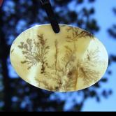 Museum Quality Picturesque Dendritic Agate Gem